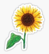 Sunflower with stem and green leaf sticker Sticker