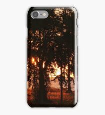 colors of a sunset with trees - colores de una puesta del sol con arboles iPhone Case/Skin