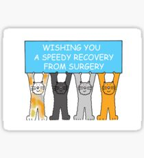 Wishing you a speedy recovery from surgery. Sticker