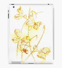 Eicheln iPad-Hülle & Klebefolie
