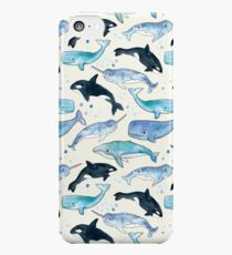 Whales, Orcas & Narwhals iPhone 5c Case