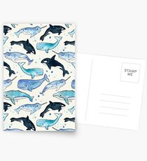 Whales, Orcas & Narwhals Postcards