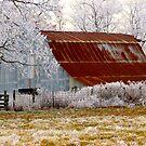Rural Arkansas by NatureGreeting Cards ©ccwri