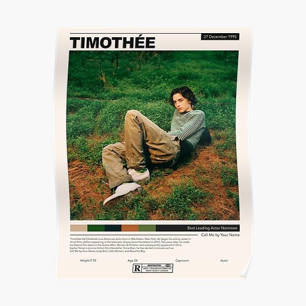timothee chalamet Poster