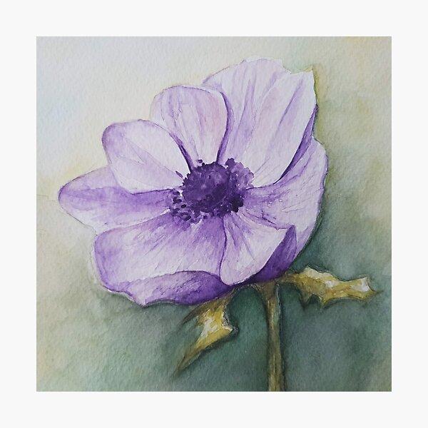 Purple flower watercolour Photographic Print