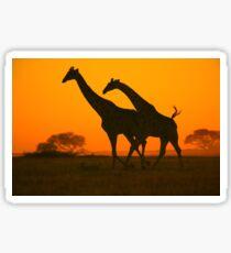 Giraffe Golden Run - African Wildlife Background Sticker