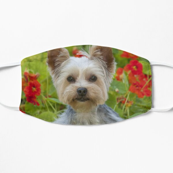 Yorkshire Terrier With Flowers Mask