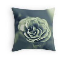 red rose in grey auf Redbubble von pASob-dESIGN