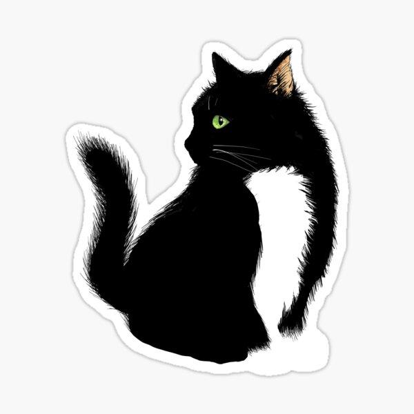 Cute Cat Sticker! Sticker