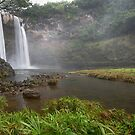 Wailua Falls - Kauai by Michael Treloar