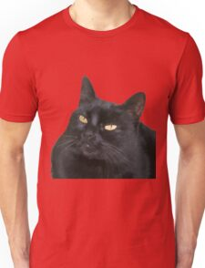 Relaxed Black Cat Portrait Vector Isolated T-Shirt