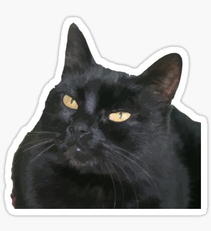 Black Cat With Yellow Eyes Vector Sticker