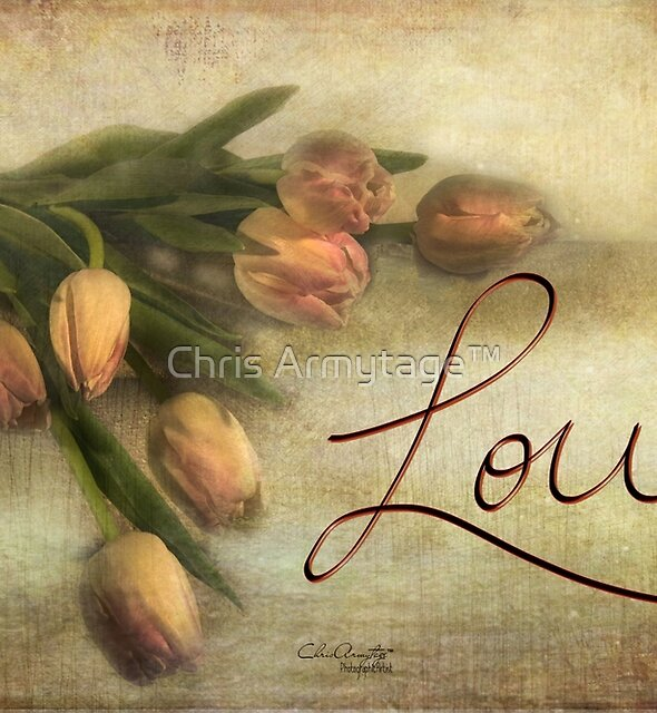 Tulips with Love  by Chris Armytage™