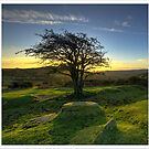 Dartmoor Sunrise by MDSPhotoimages