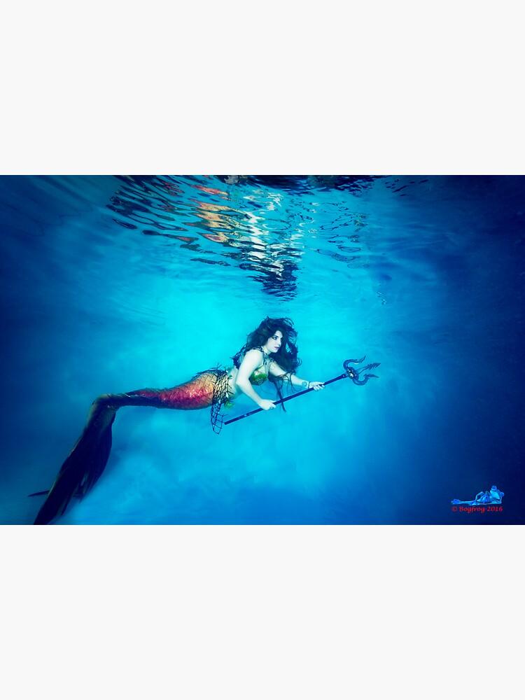 Mermaid Krieger reflektiert unter Wasser von bogfrog
