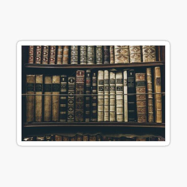 Bookshelf Socks - Bibliophile Gift Sticker