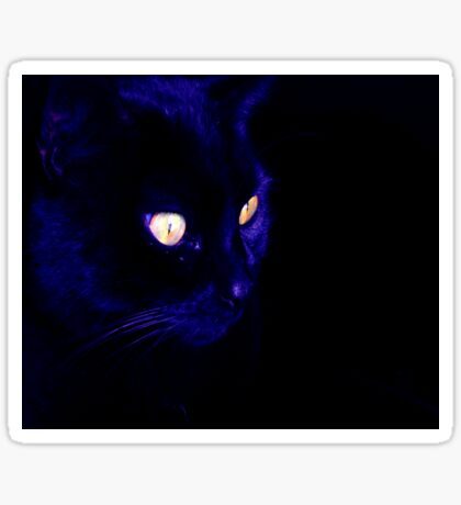 Black Cat With Haunting Halloween Eyes Sticker