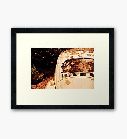 Leaves on a Bug Framed Print