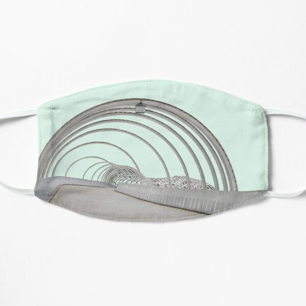 Webb Bridge Flat Mask