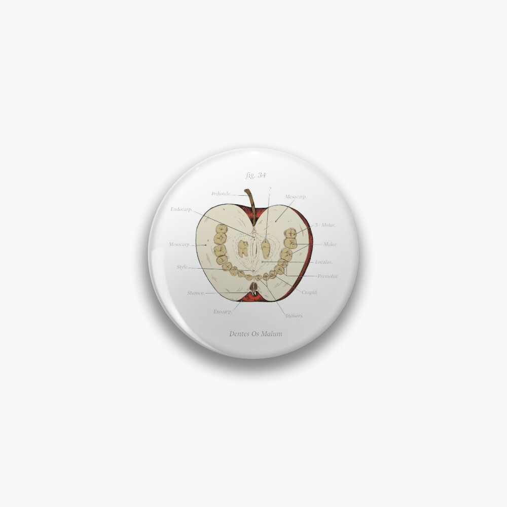 The Magnus Archives - Anatomy Class - Teeth Apple Pin