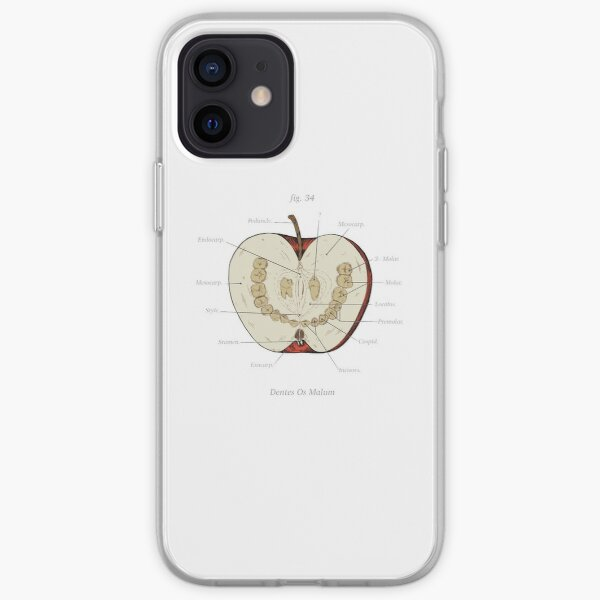 The Magnus Archives - Anatomy Class - Teeth Apple iPhone Soft Case