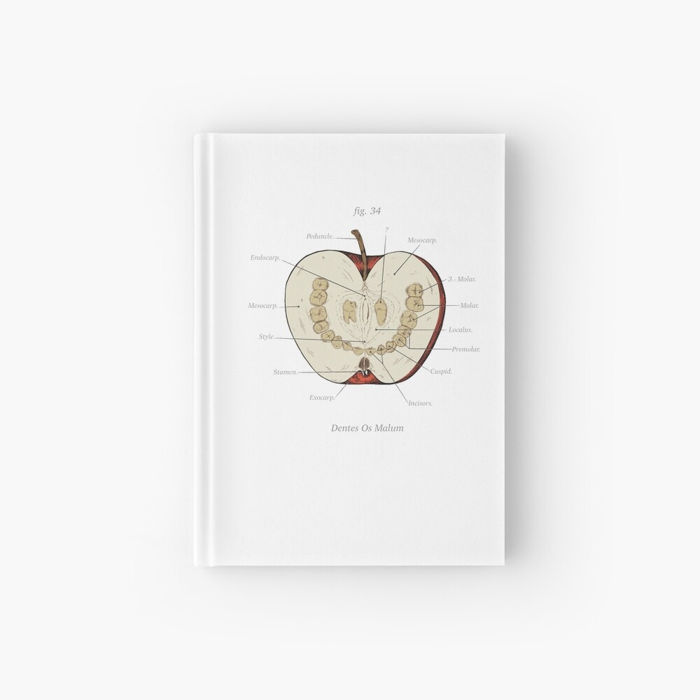 The Magnus Archives - Anatomy Class - Teeth Apple Hardcover Journal
