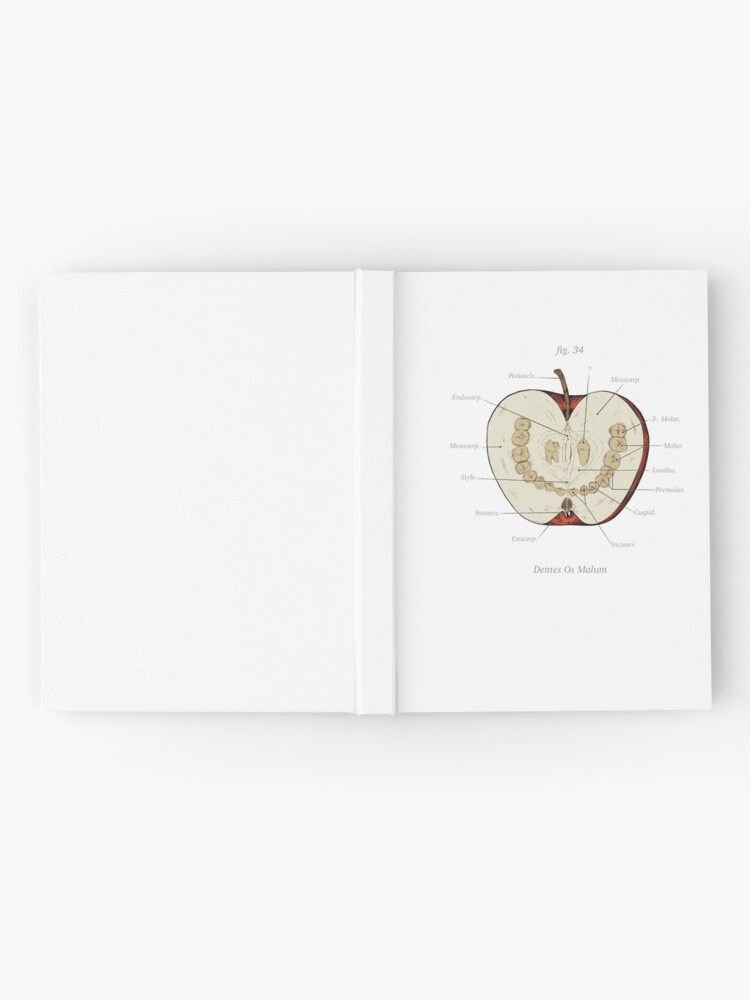 Alternate view of The Magnus Archives - Anatomy Class - Teeth Apple Hardcover Journal