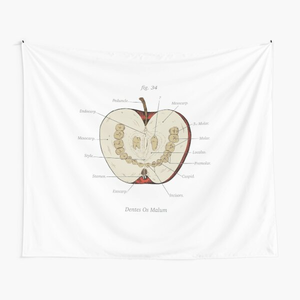 The Magnus Archives - Anatomy Class - Teeth Apple Tapestry