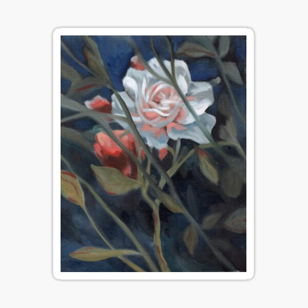 study of a rose in the back garden Sticker