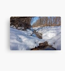 HDR Snowy pond Canvas Print