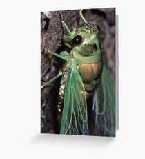 Cicada of Emerald & Gold Greeting Card