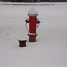 The Fire Hydrant by trisha22