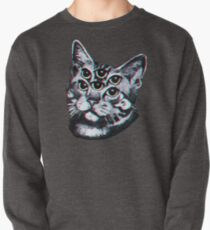 Psychedelic Cat (3D vintage effect) Pullover