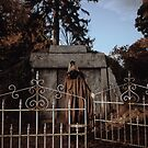 Cemetary Gates by lightwitch