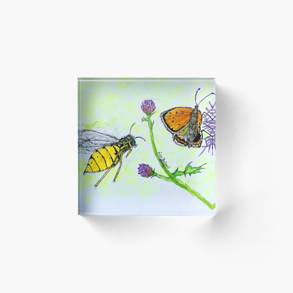 Butterfly Wasp Attack Acrylic Block