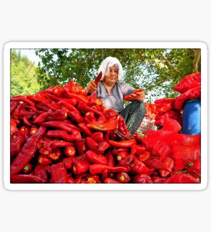 Turkish Woman Preparing Red Peppers for Biber Salçası Sticker