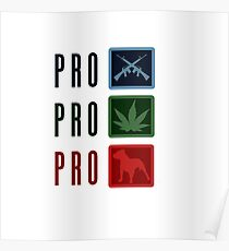 Pro freedom Poster
