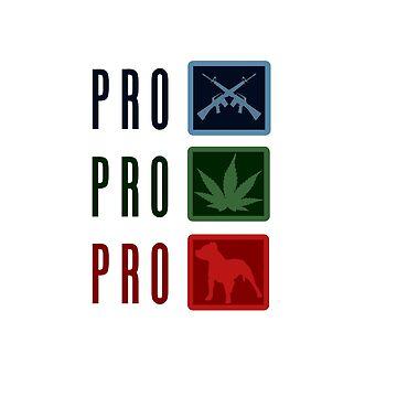 Pro freedom by Sundancerox