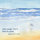 Courage in a Storm- Matthew 14:27 by Diane Hall