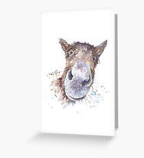 Master Donkey Greeting Card