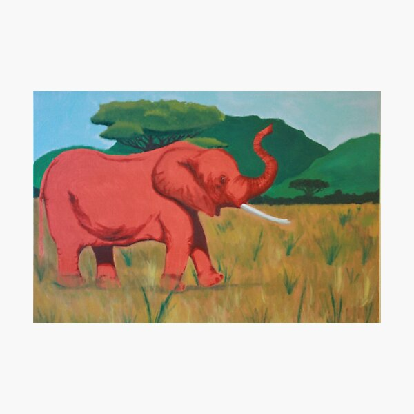 red elephant Photographic Print