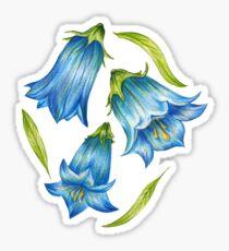 Bluebell Sticker