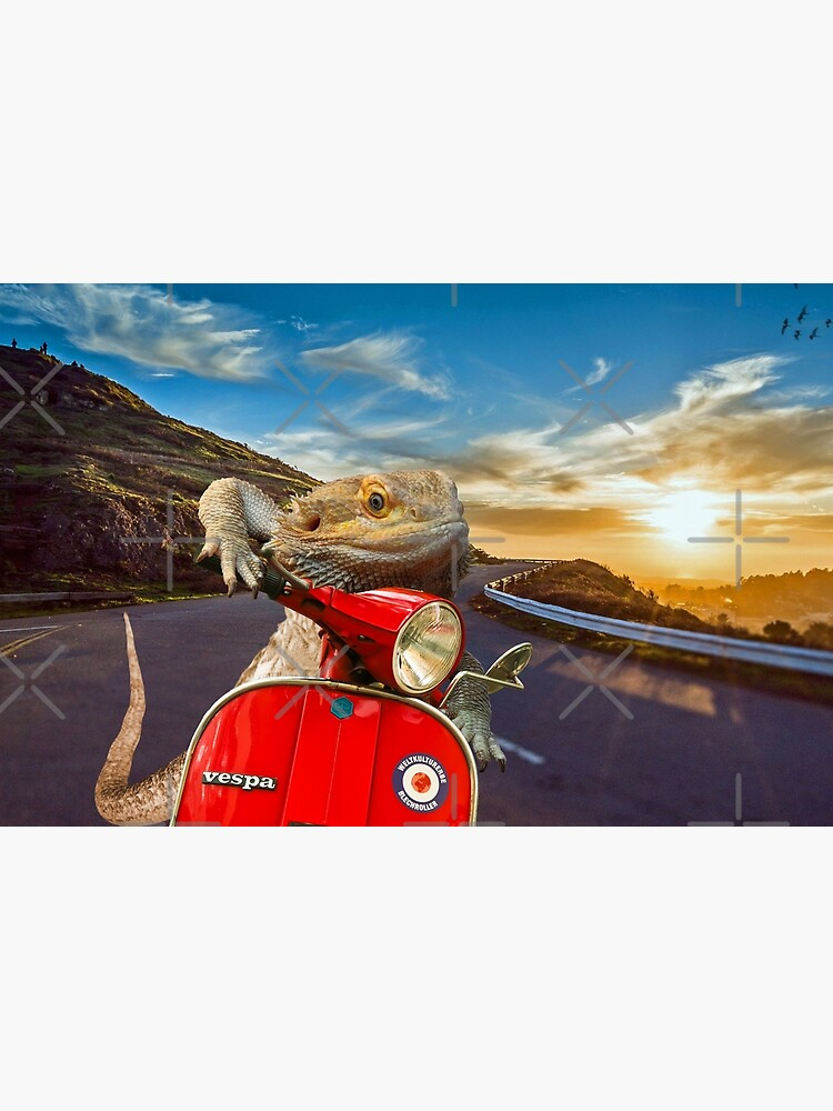 Bearded Dragon Sunset Vespa Roadtrip by snibbo71