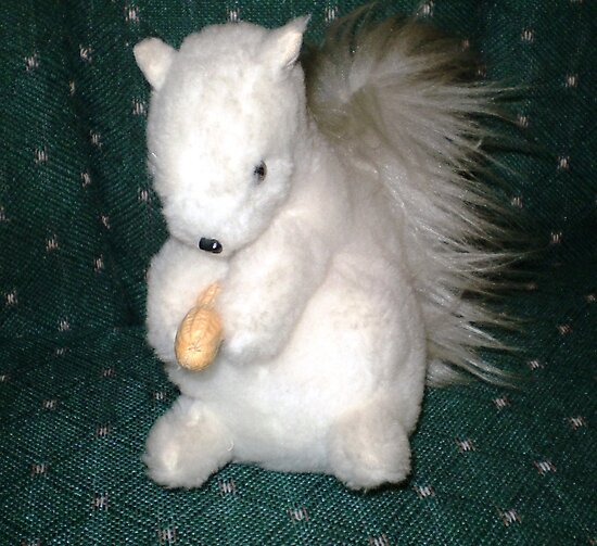 Exeter- White Squirrel - made for me as a gift by EdsMum