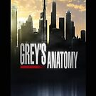 Grey's Anatomy   by sullat04