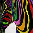 Rainbow Zebra by saifty