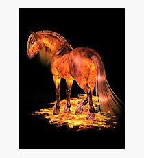 The Fire Stallion Photographic Print