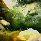Cave Pool (Plasma Agate) by Stephanie Bateman-Graham