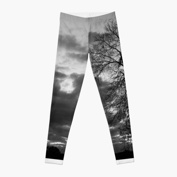 Crooked Tree Leggings