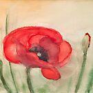 Mohnblume - Große rote Mohnblume von Jens-Uwe Friedrich